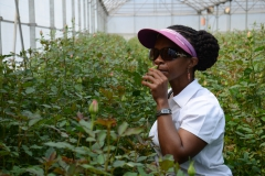 Class 1 Field Trip to Nini Flowers, Kenya